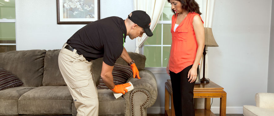 Waukegan, IL carpet upholstery cleaning