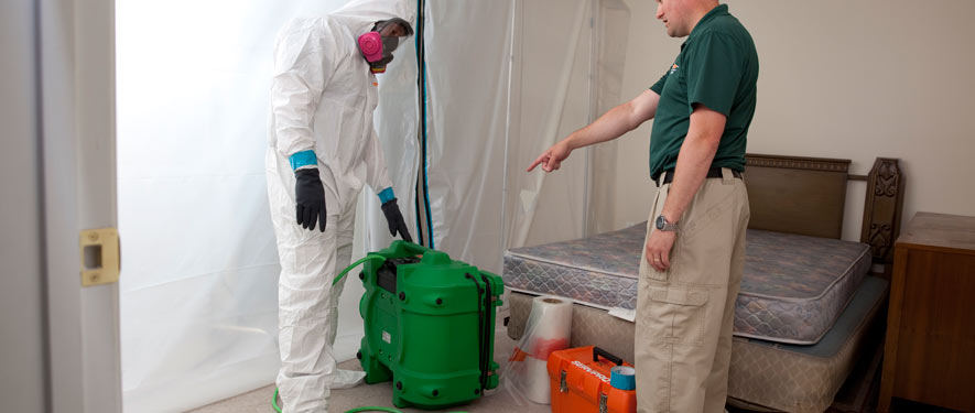 Waukegan, IL mold removal process